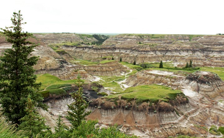 horseshoe canyon small.jpg